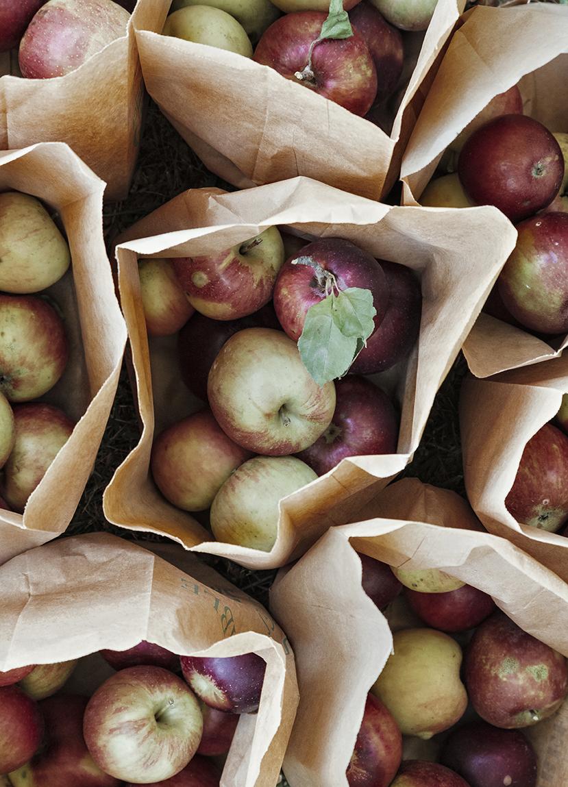 ApplesInBags_day2_0012_crop.jpg