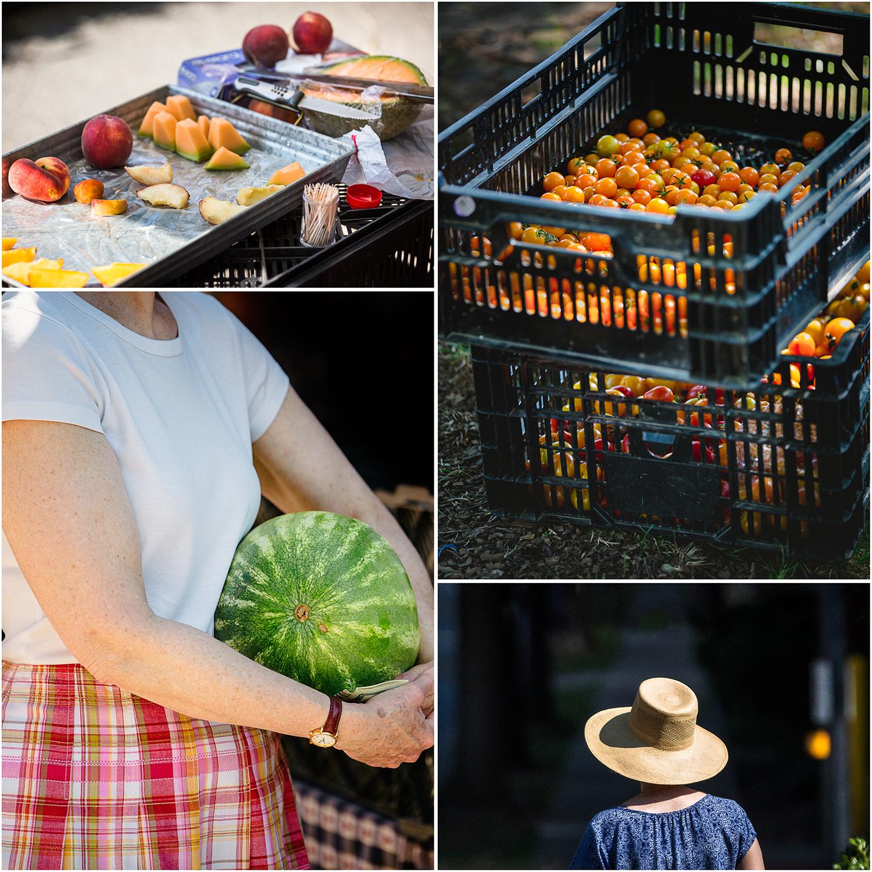 FarmersMarket_Scenes_Collage.jpg