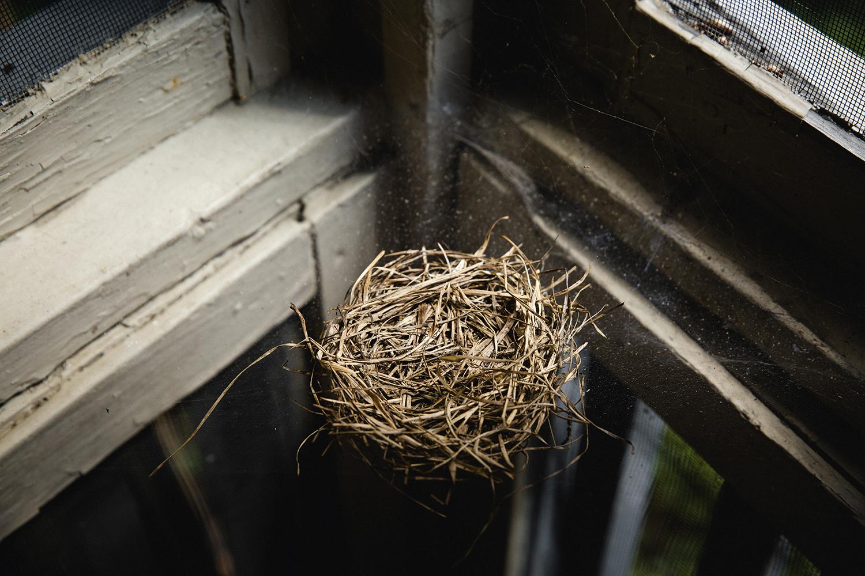 Birds_Nest_Flattened_0026.jpg