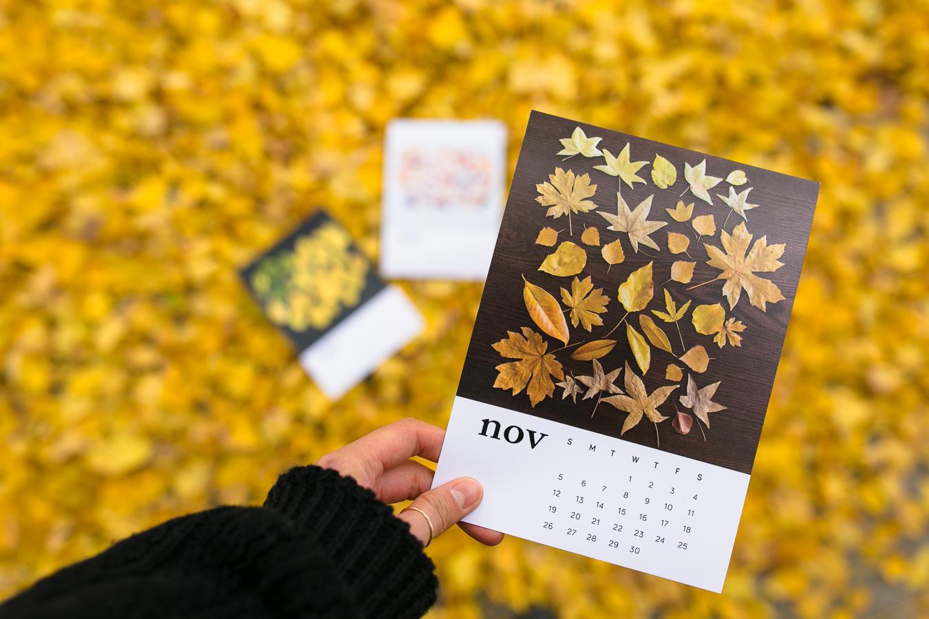 calendar-8420.jpg