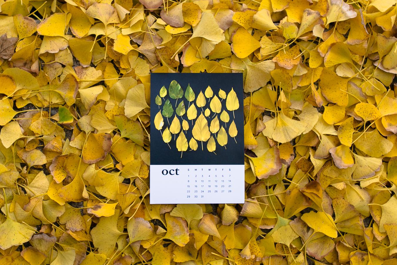 calendar-8402.jpg
