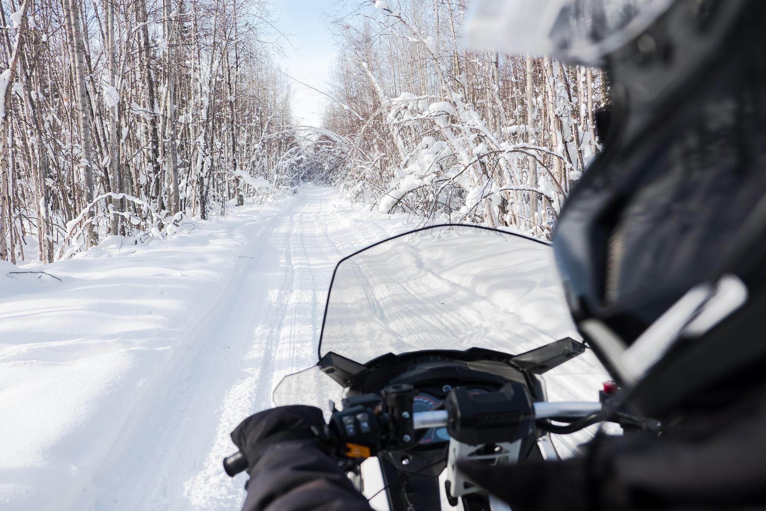 Alaska-Adventure5200.jpg
