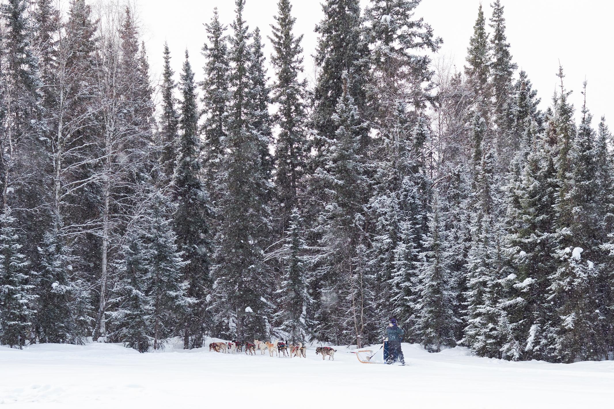Alaska-Adventure5968.jpg
