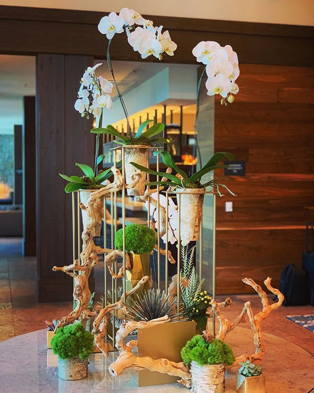 Just a standard Thursday @edgewoodtahoe! Go checkout our lobby flowers in the lodge!
