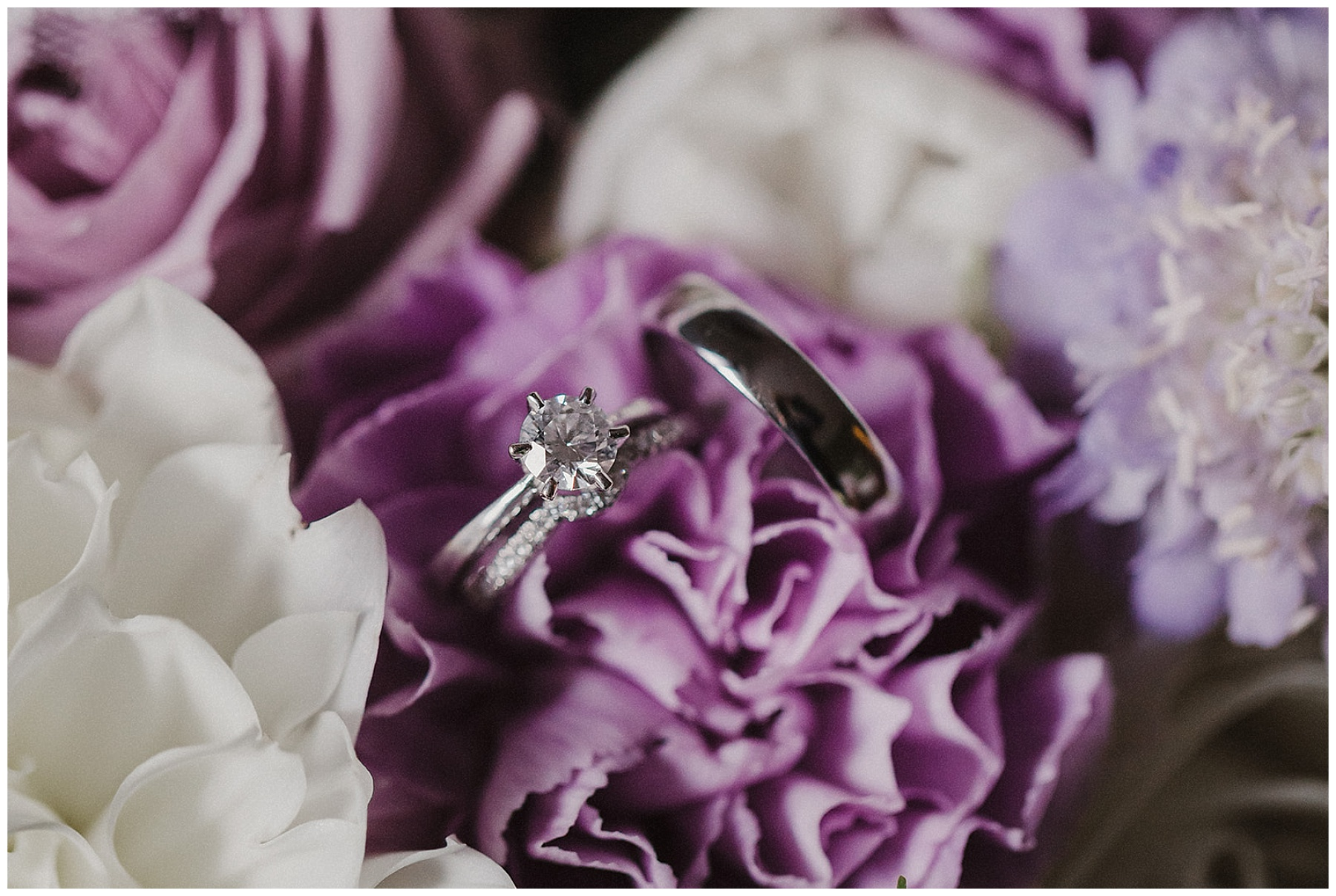 The Bride and Groom's rings in a bed of flowers