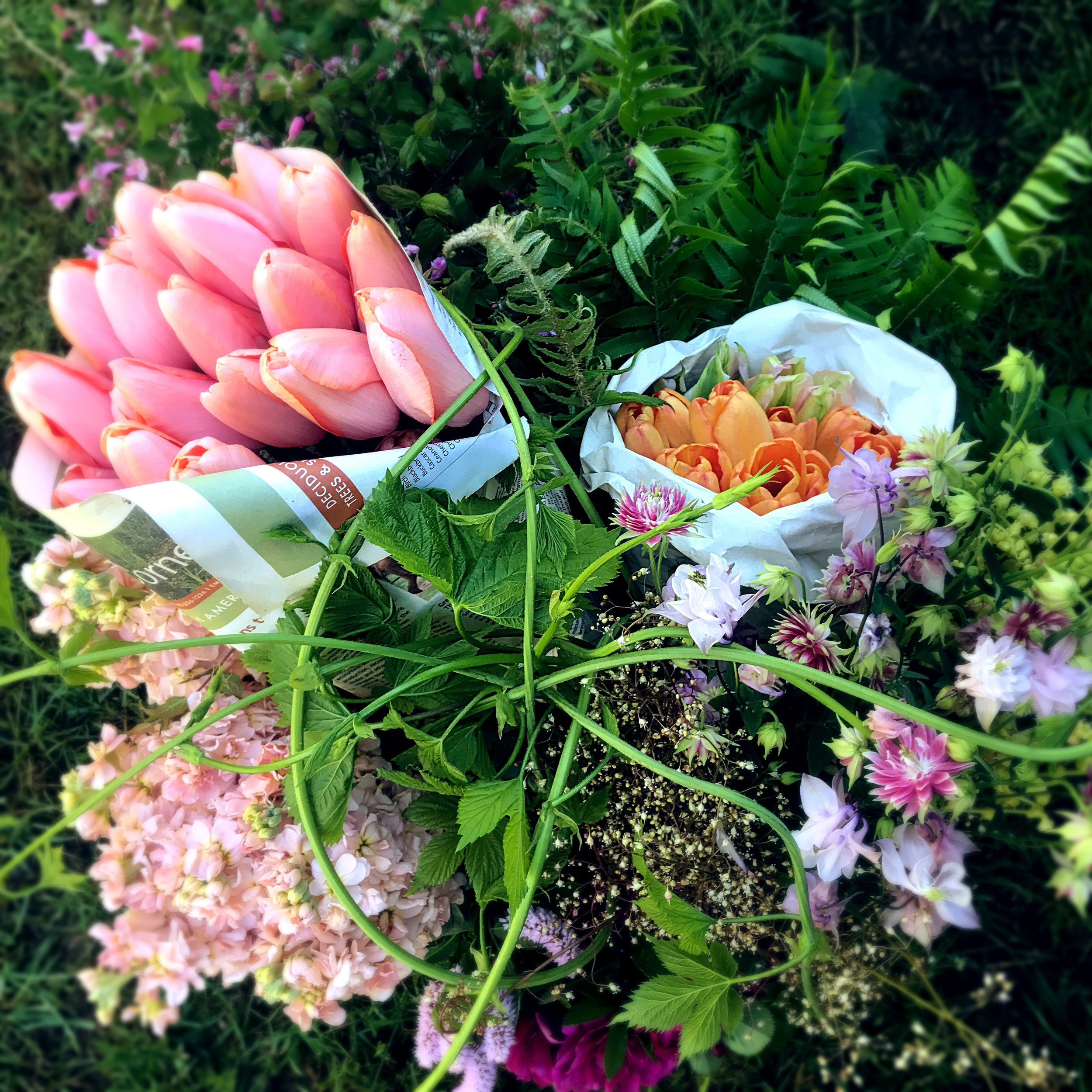 free range diy flowers bulk buckets