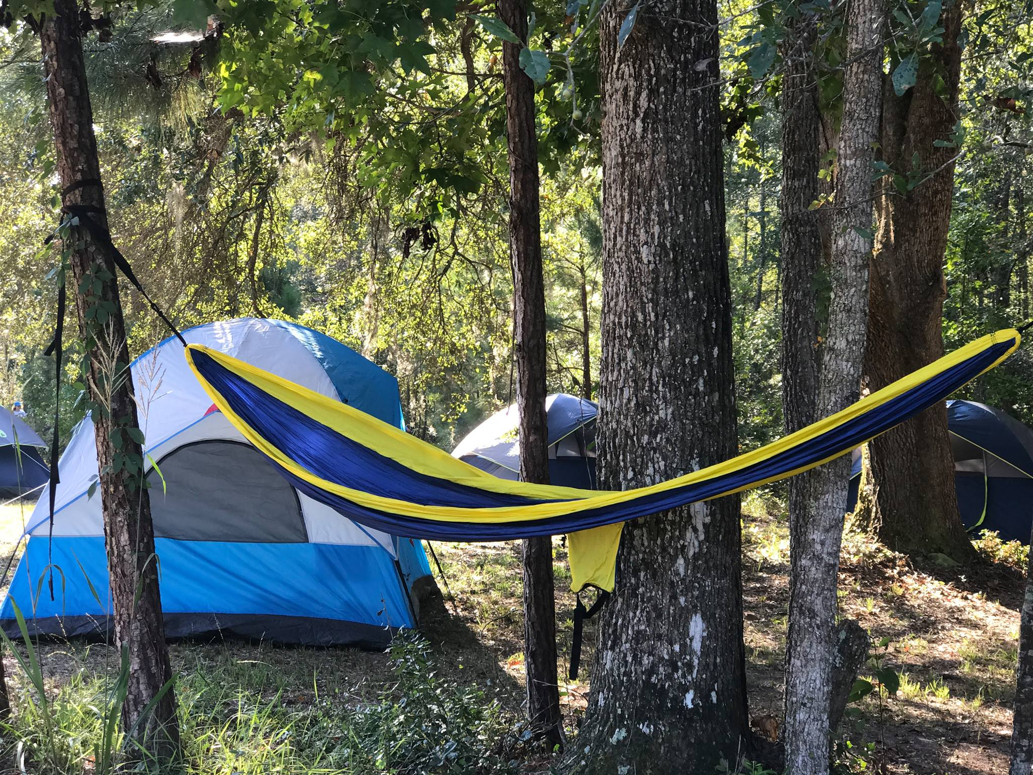 Campsites - Unplug & reconnect with nature on the Grounds!-$55 per night-Includes full use of the bathhouse, trails, ponds & private river dock-Option to camp by river or homestead-Need a tent? We have rentals available!FIND US ON AIRBNB OR HIPCAMP TO BOOK!