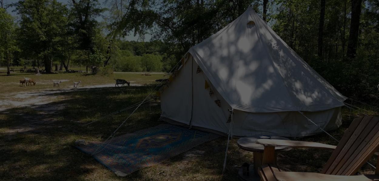 Camping & Rentals -