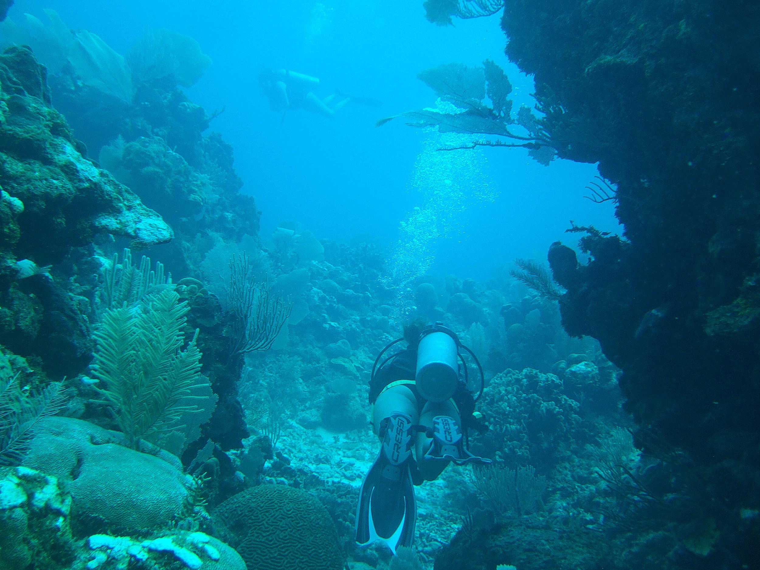 Diving Honduras 1.jpg