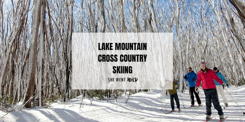 Lake Mountain Cross Country Skiing.jpg