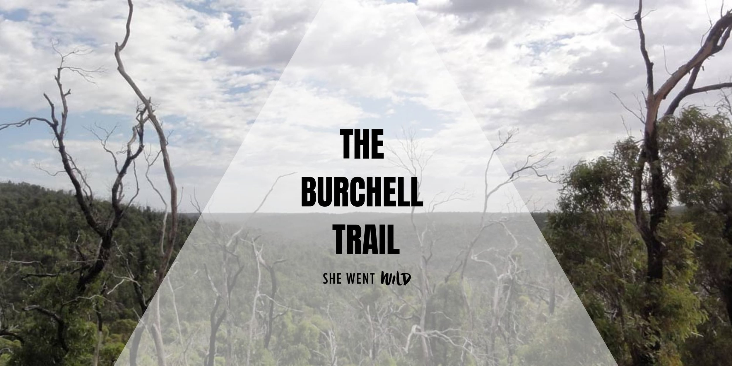THE BURCHELL TRAIL WITH SHE WENT WILD.jpg