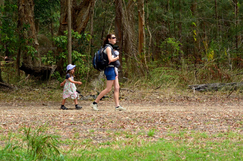 Kid-friendly hikes in NSW, Australia.jpg