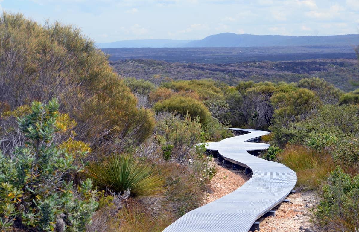 Bushwalking at Wattamolla. Image Source: Adobe Stock