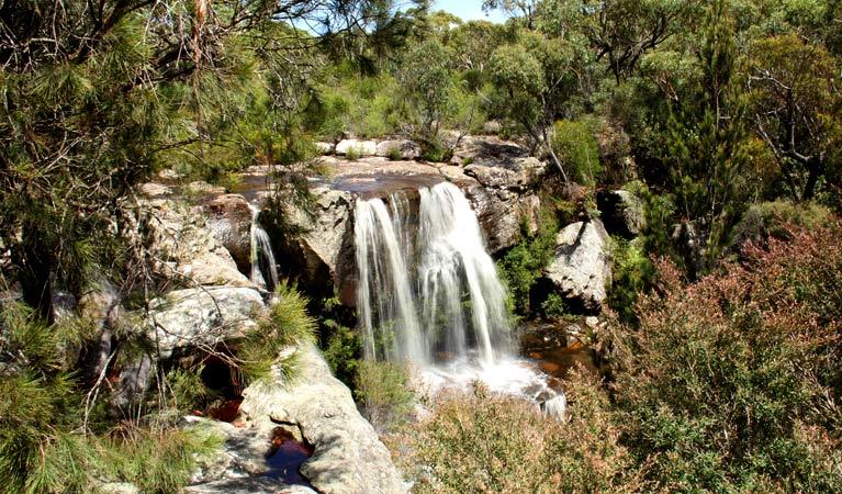 Maddens Falls, Dharawal National Park. Image Source:  NSW National Parks