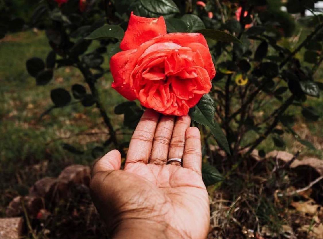 CGP_monthly_color_Challenge_wih_Atlanta_photographer_Chanel_French_orange_photos_by_Lisa_Lynett_02.jpg