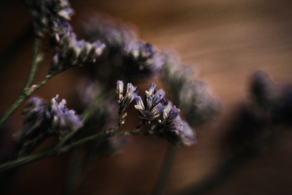 Blogger-tips-for-beginners-purple-flowers-and-tea-cup-by-Atlanta-photographer-Chanel-G-Photography-2.jpg