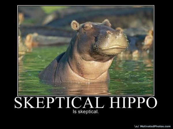 skeptical hippo.jpeg