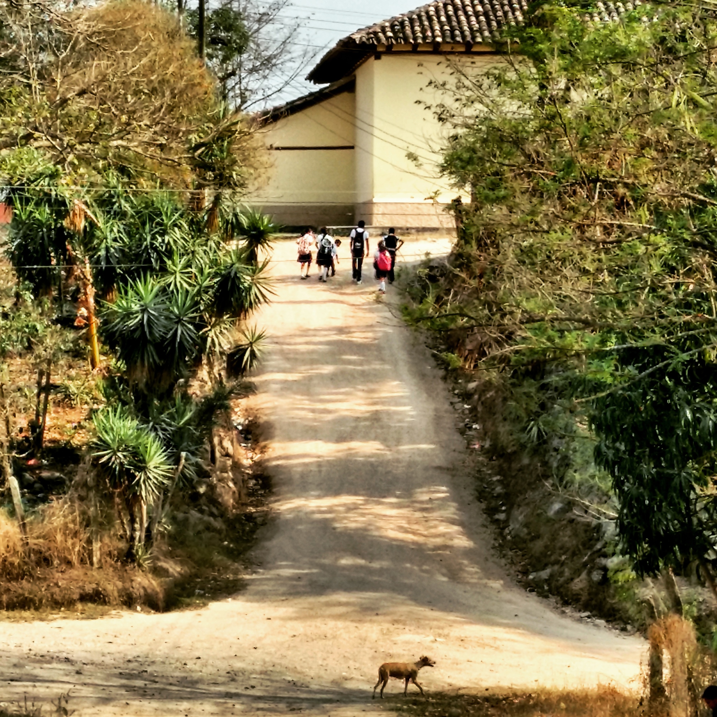 Pediatric patients walk home from clinic in Belen, Honduras.