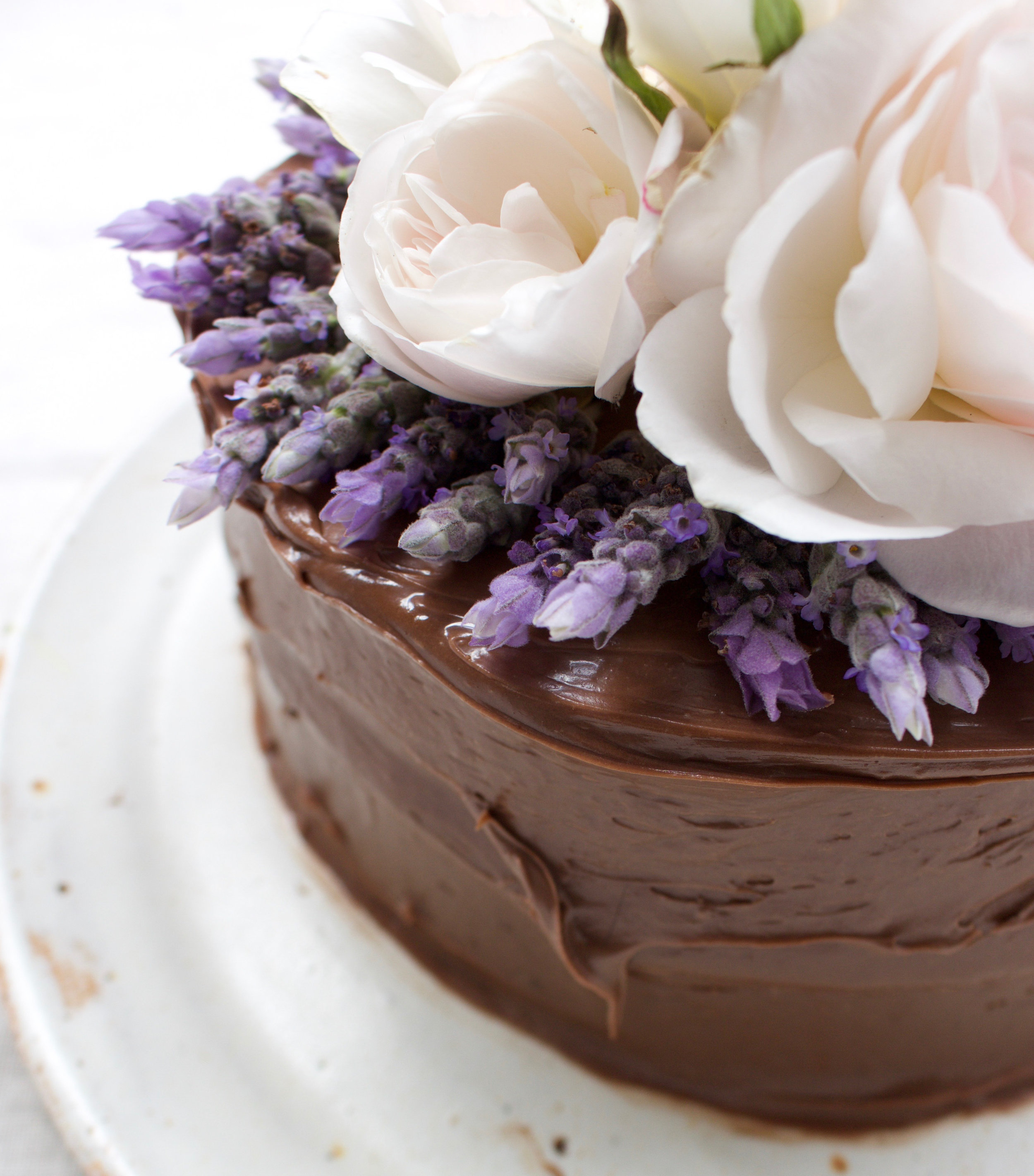 < triple chocolate & lavender >