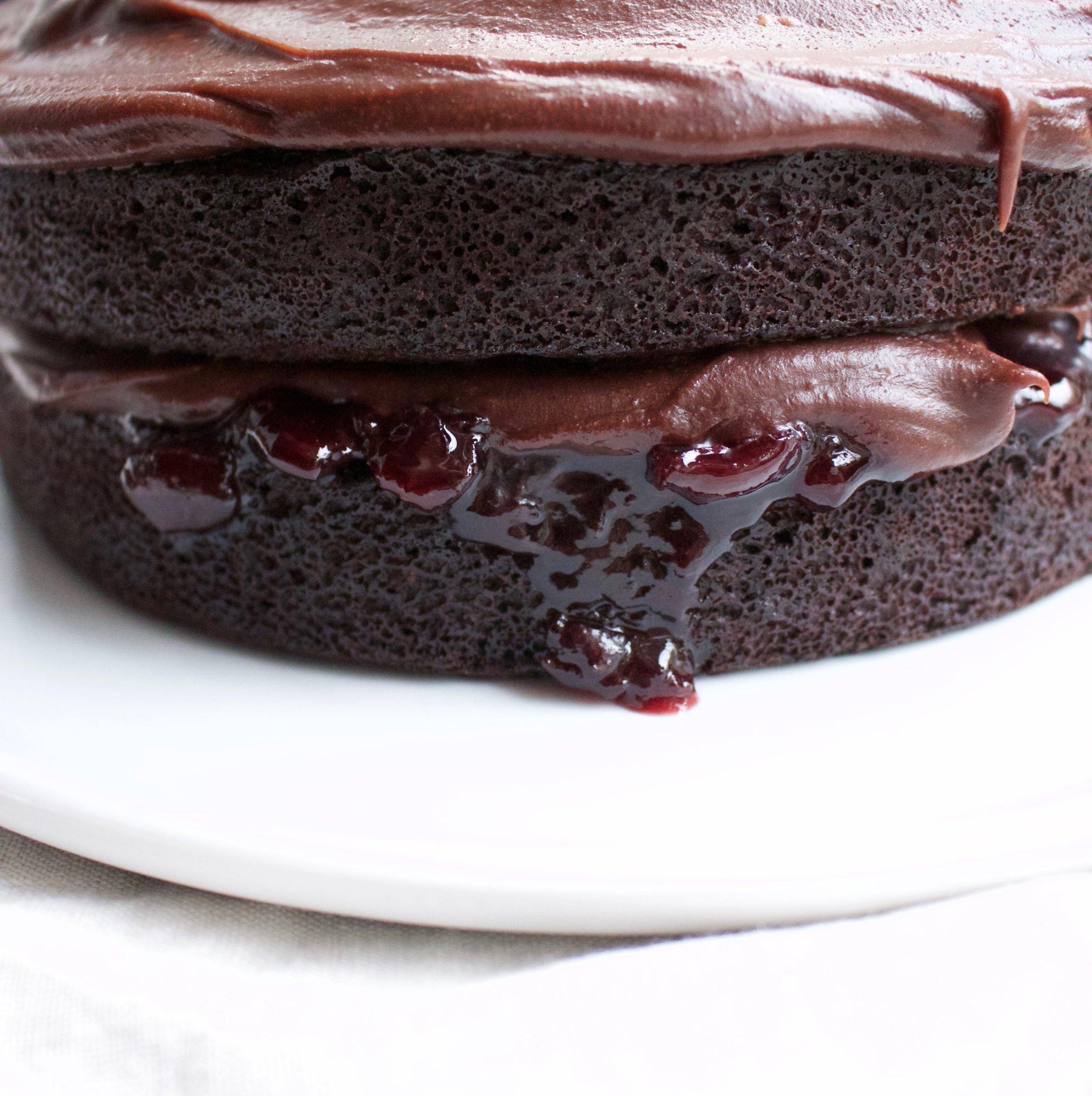 < dark chocolate & sour cherry >