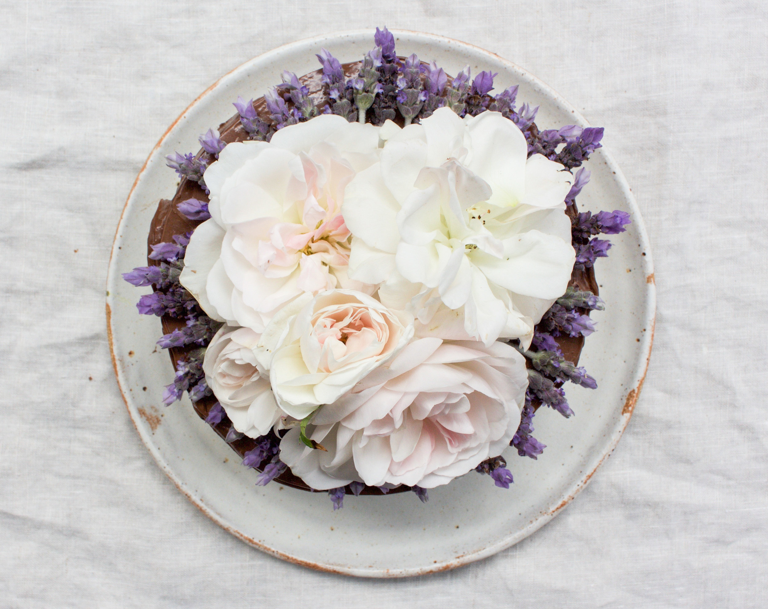< chocolate & lavender >