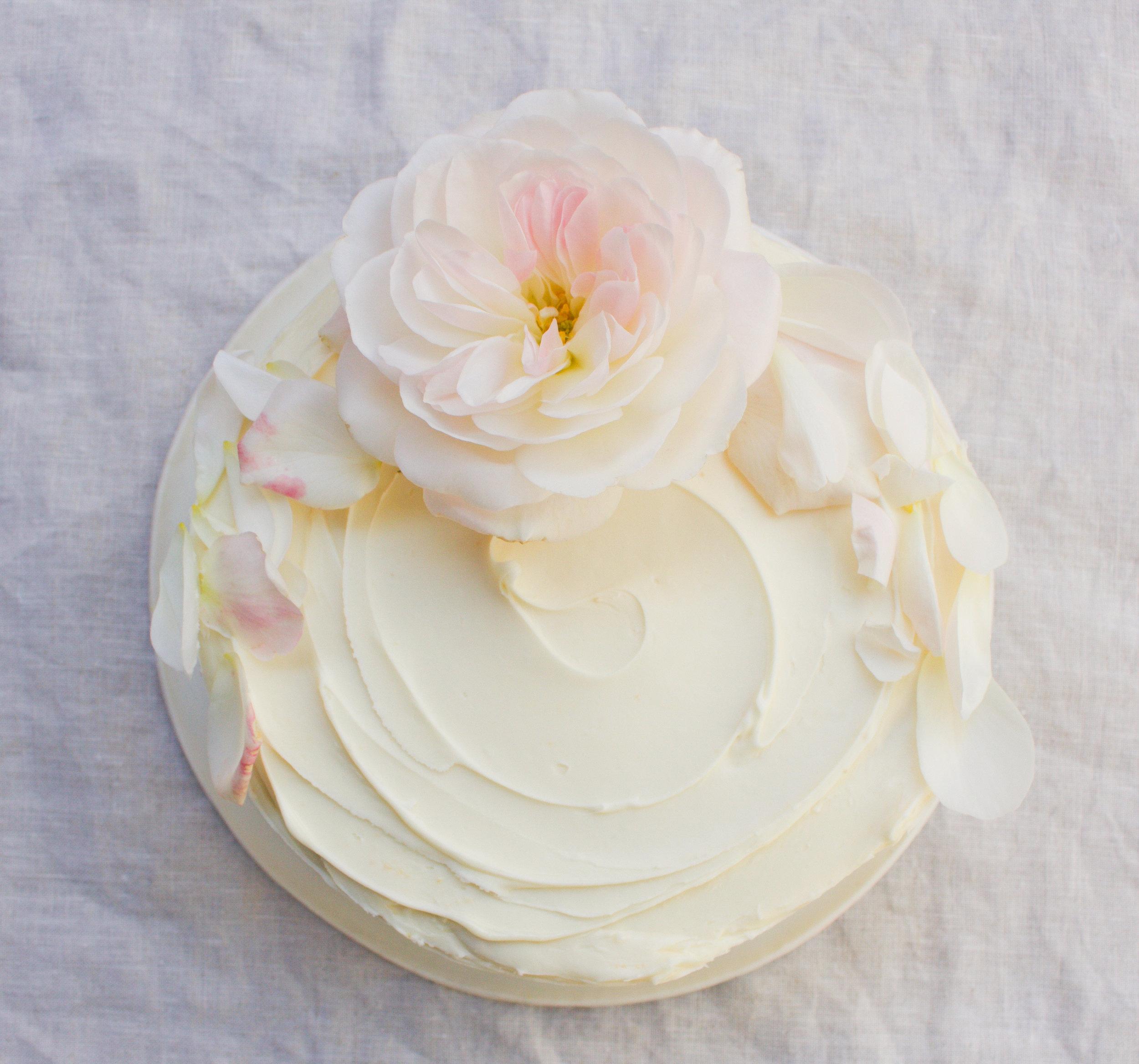 < vanilla & rose >