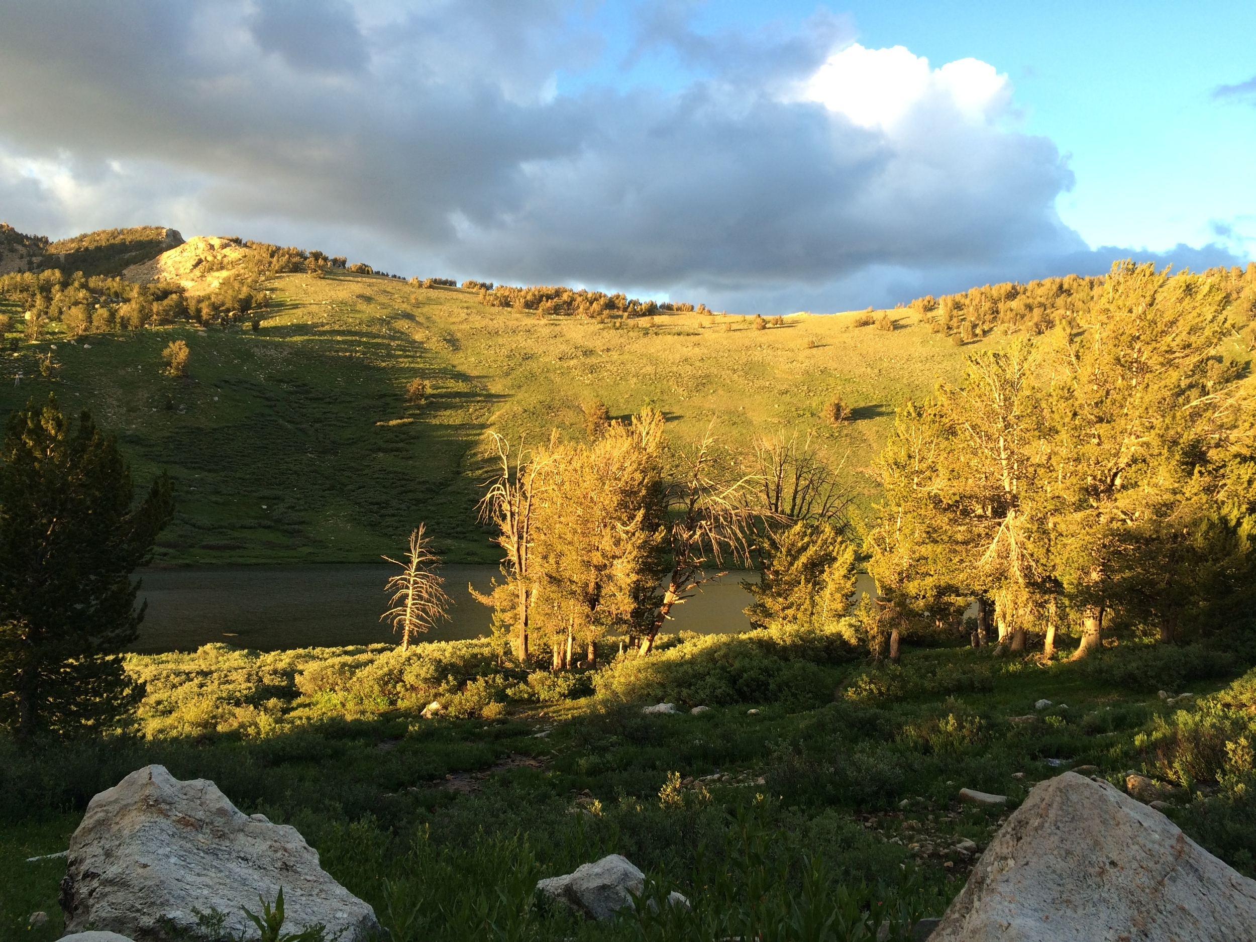 Golden hour on the saddle above Favre Lake
