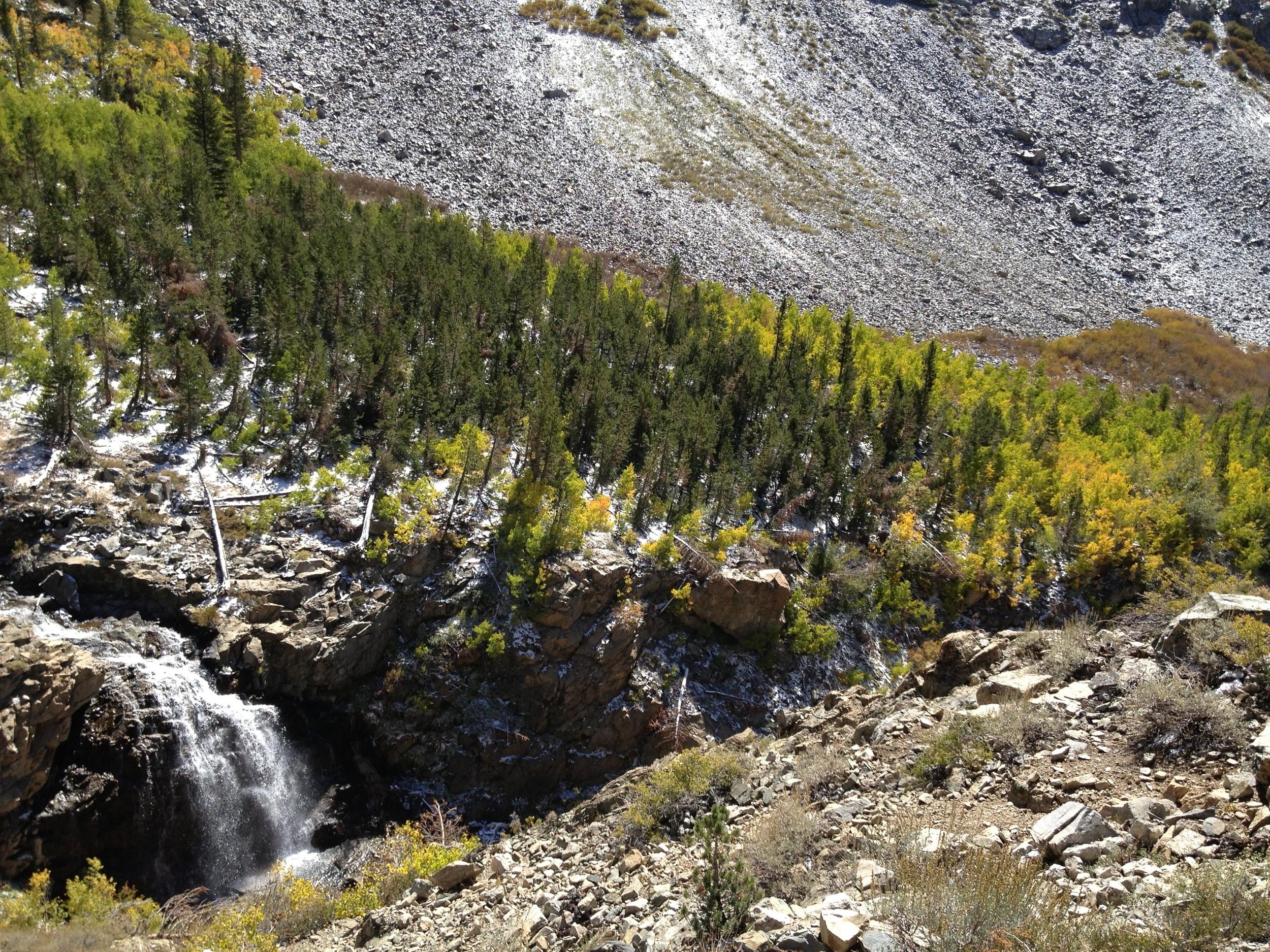 Woods Creek Cascade