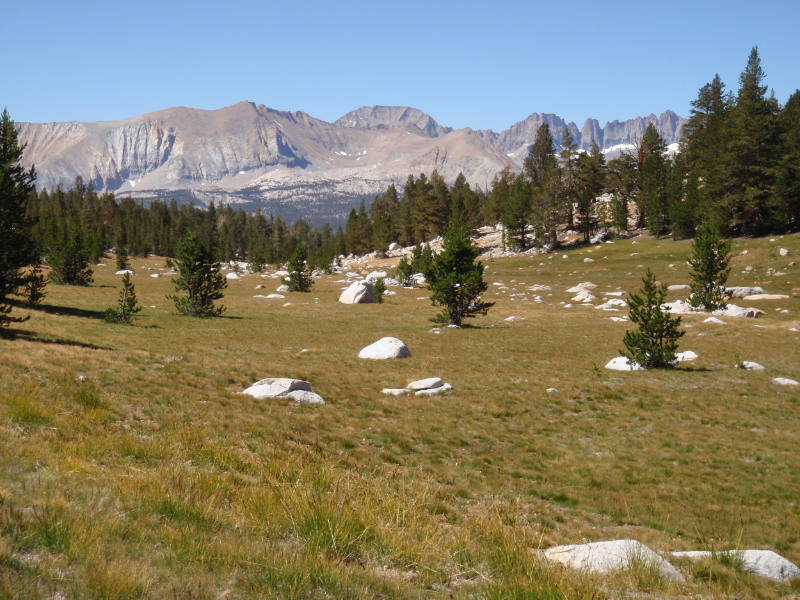 Meadow below Bighorn Plateau along the JMT/PCT
