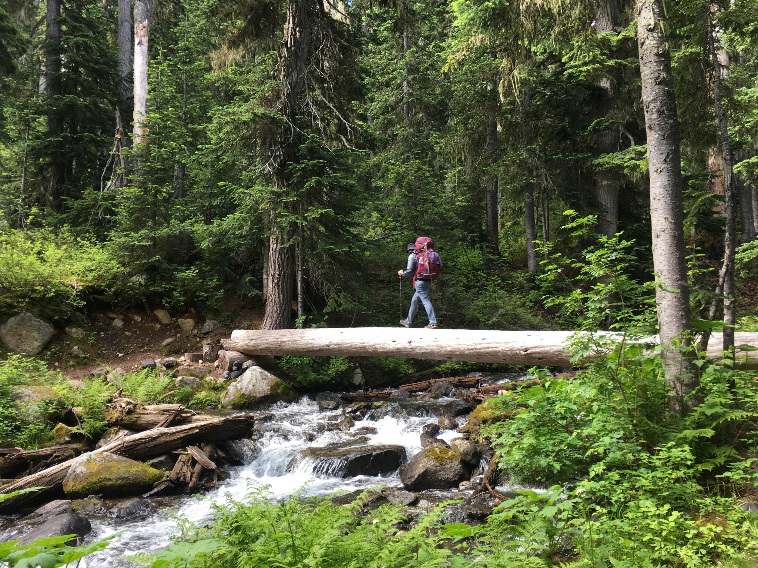 Crossing a log foot bridge.