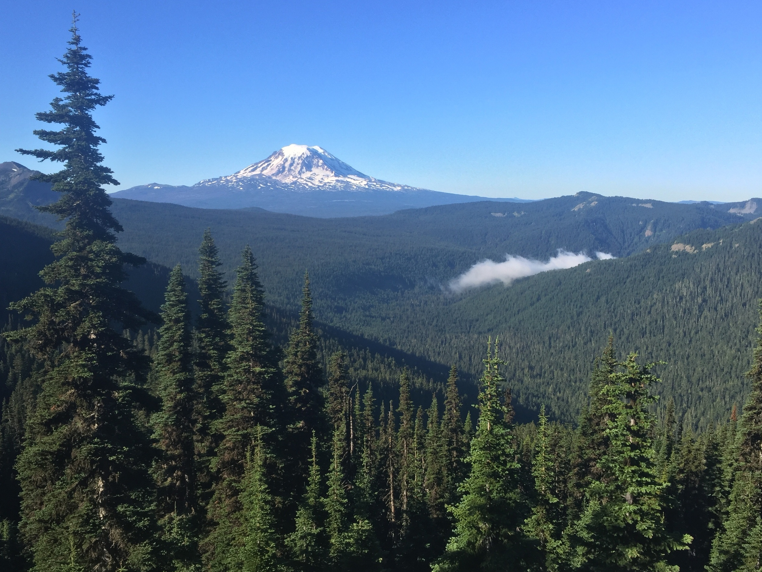 Mt.Adams and the last of the morning mist leaving Sheep Lake