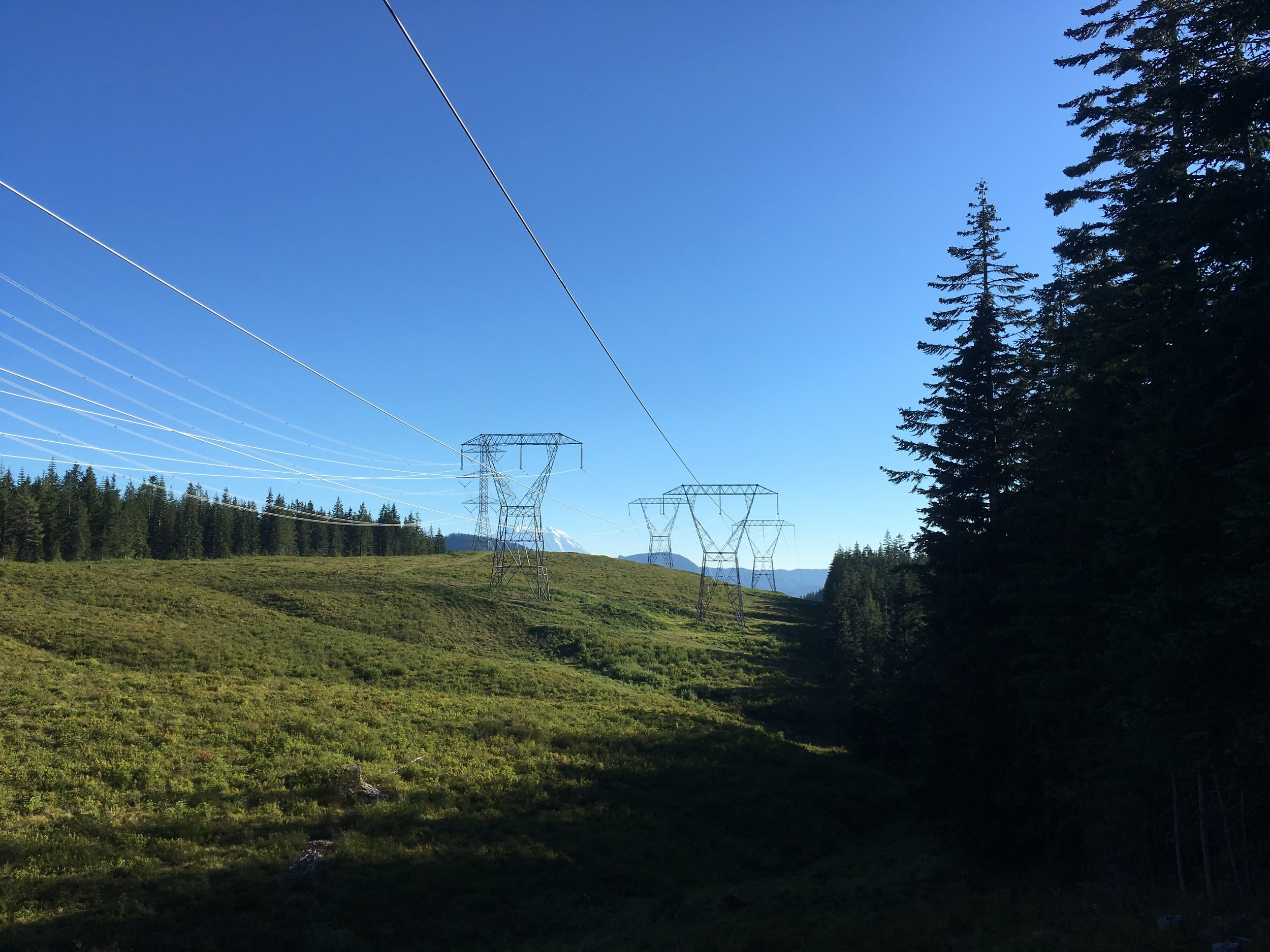 Our first views of Mt Rainier through high voltage powerlines.