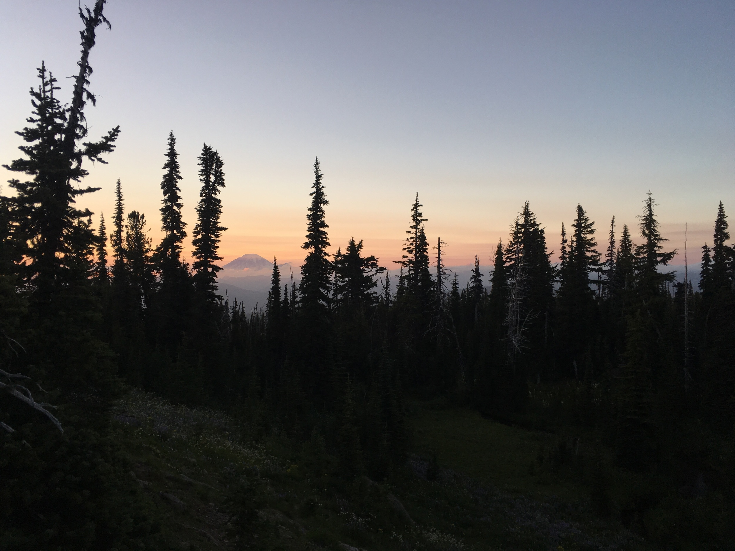 Rainier at dusk from our campsite at Killen Creek.