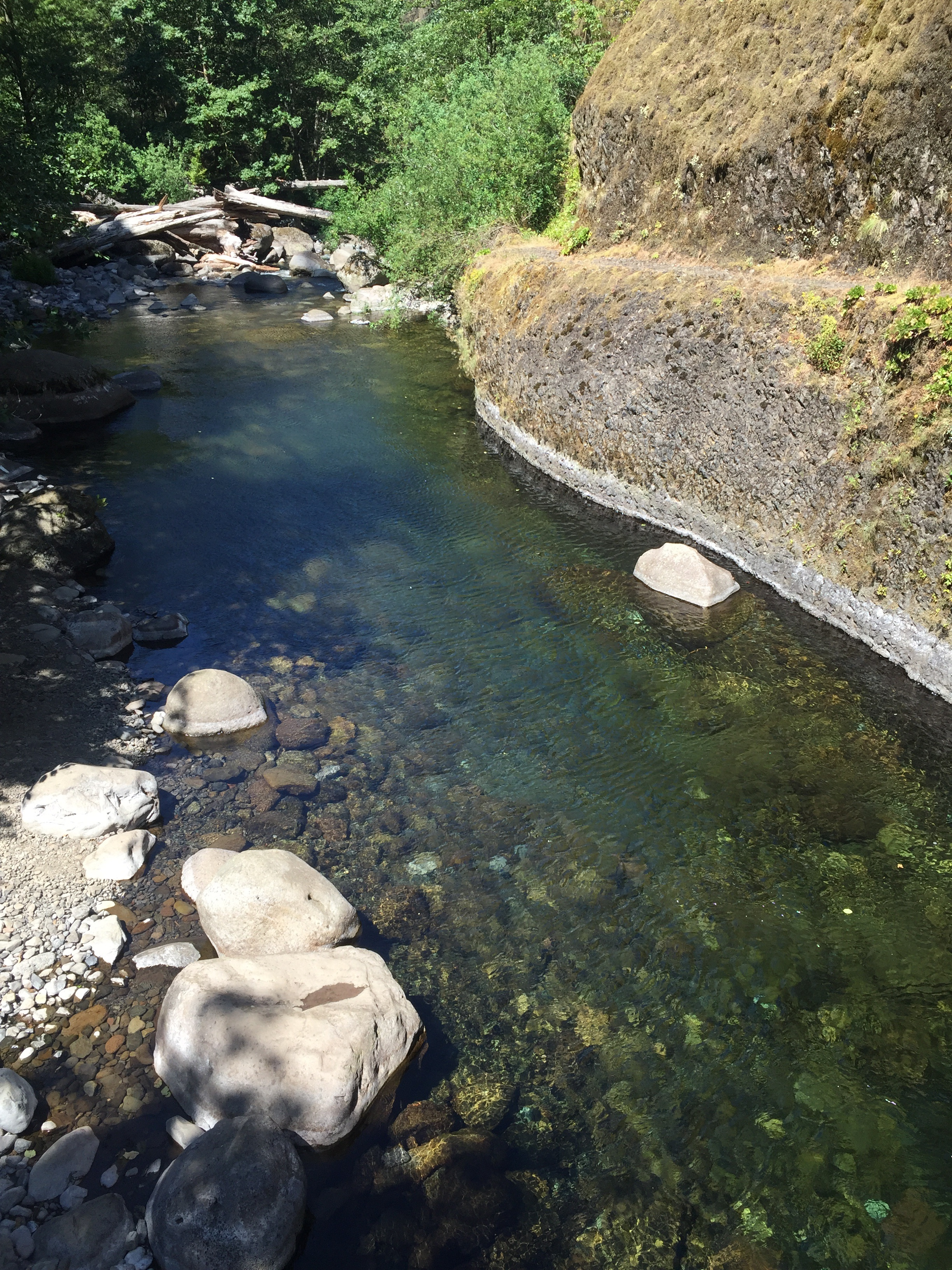 The trail and a clear, calm pool near 4-mile bridge