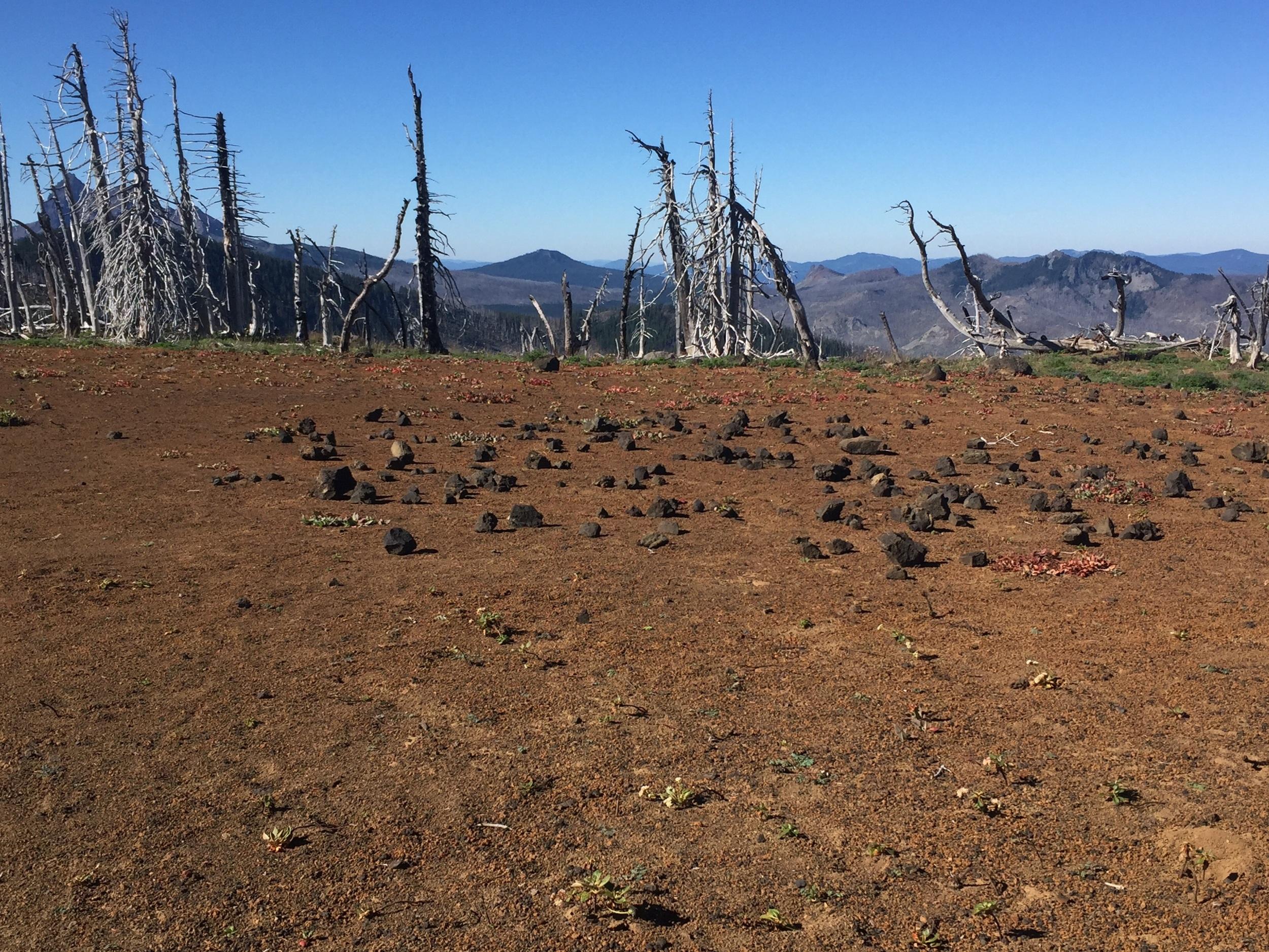 Volcanic bocce court? A high plateau as we continue south towards Rockpile Lake