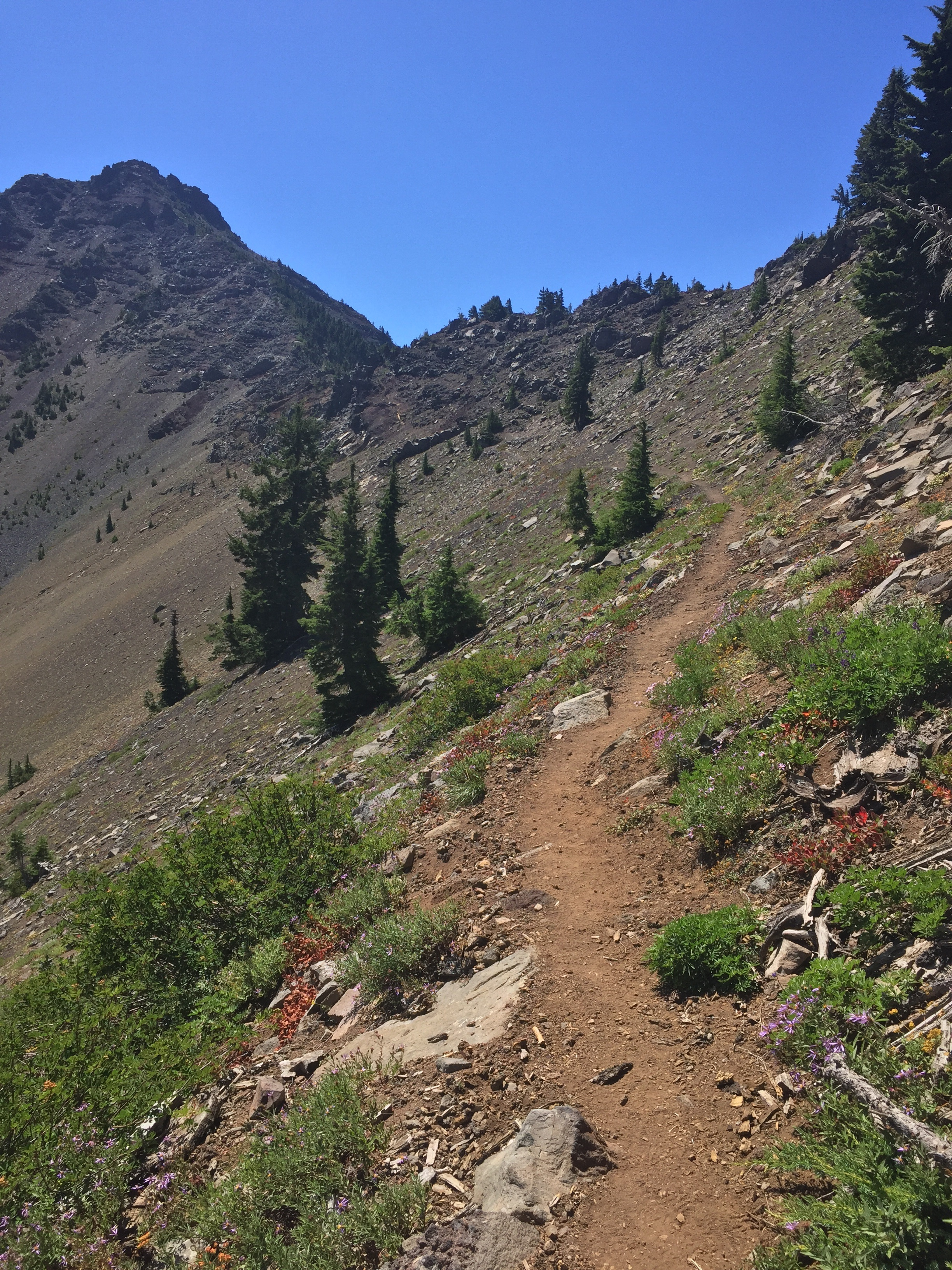 After miles of getting closer, we are on final approach to the shoulder of 3-Fingered Jack