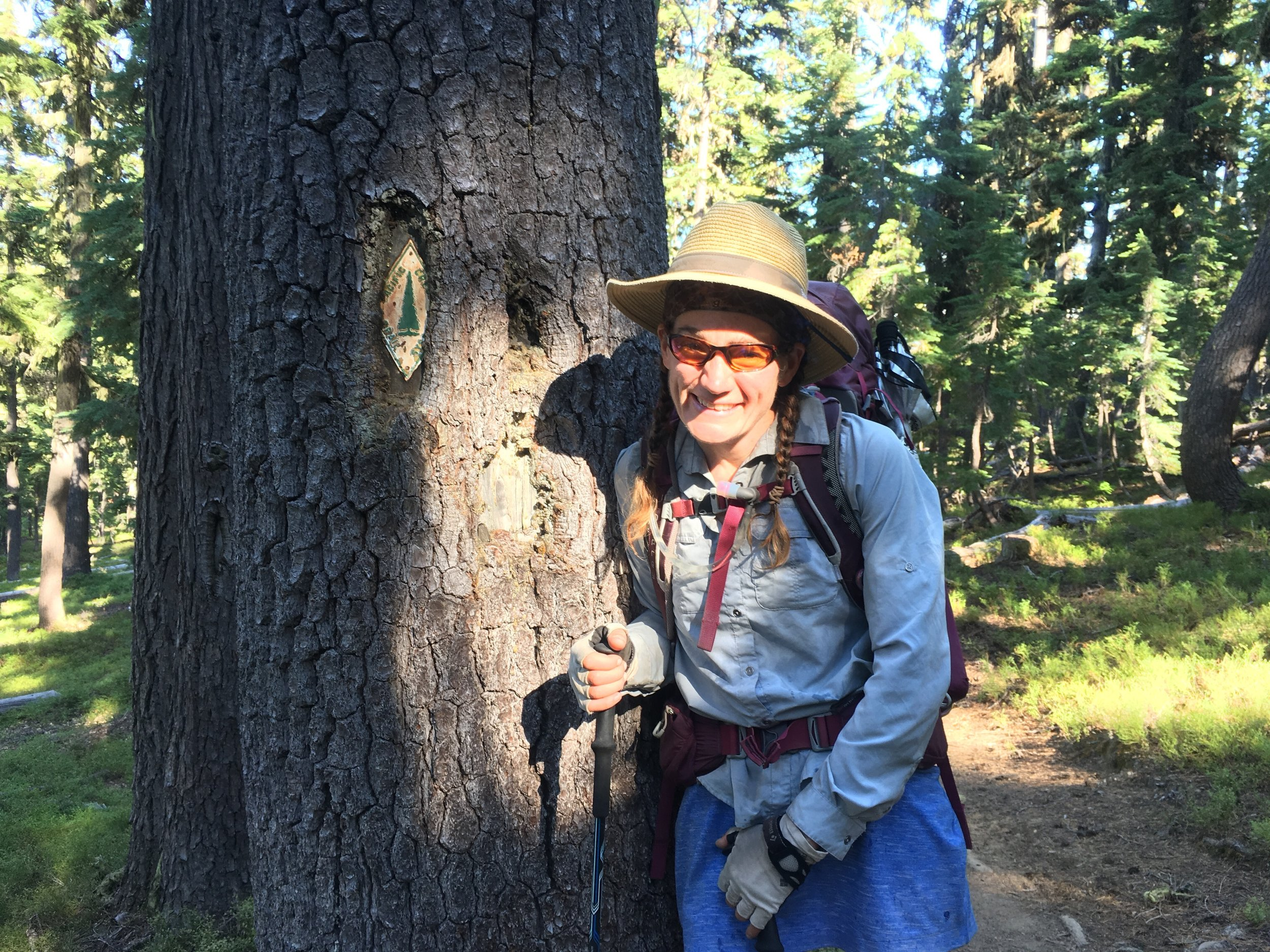 Huckleberry excited to be back on the PCT and some relative shade.
