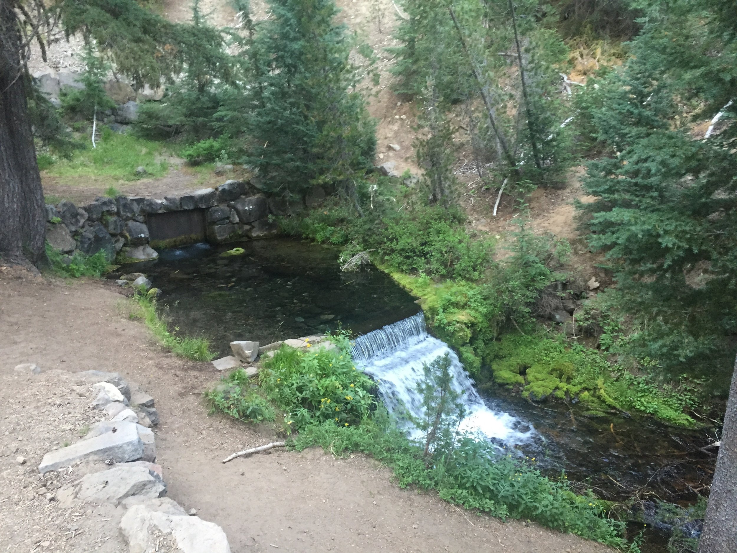 Annie's Spring gushes on the outskirts of Mazama Village south of Crater Lake