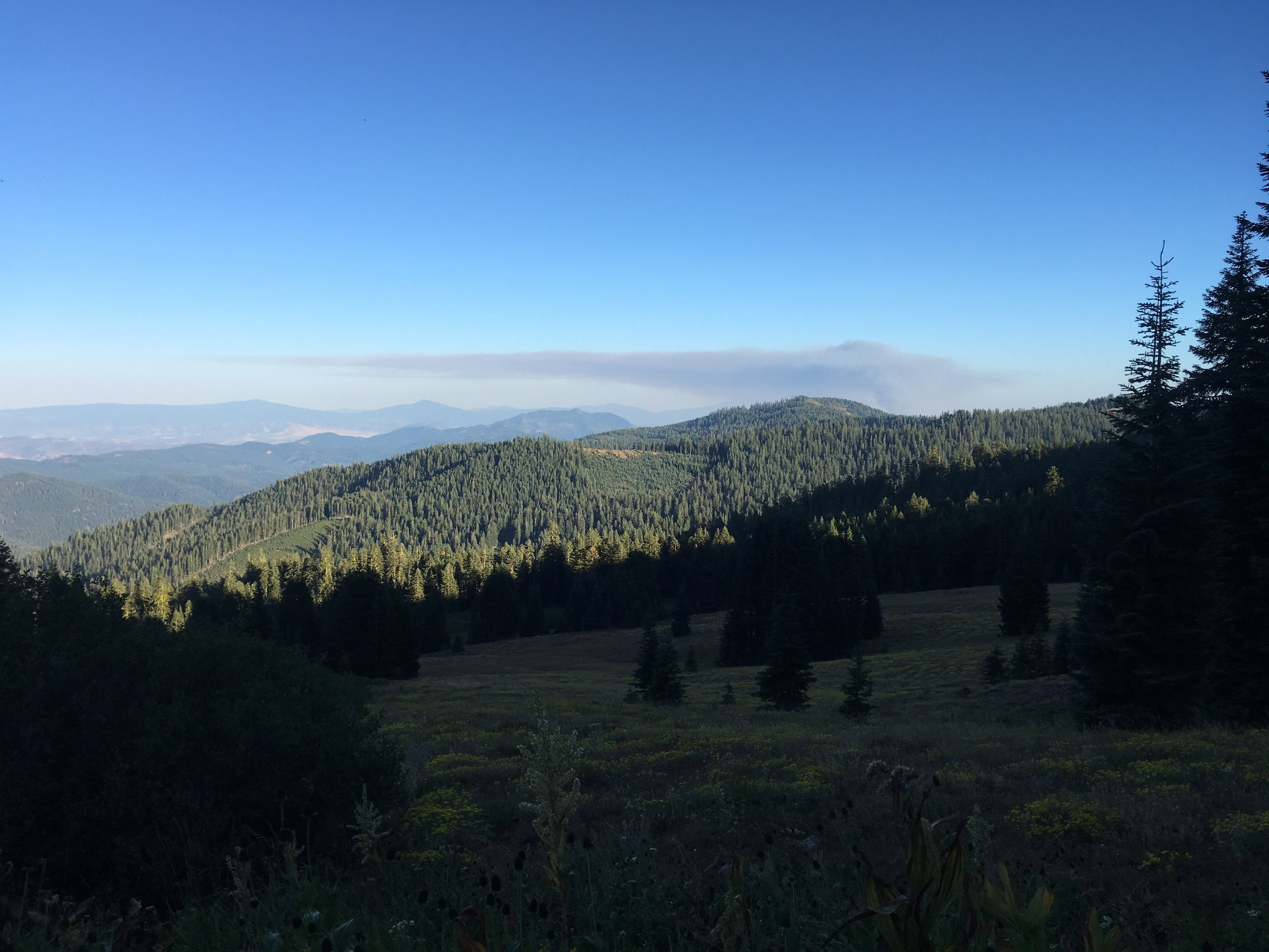 Same ridgeline 3 hours later and a much larger plume.