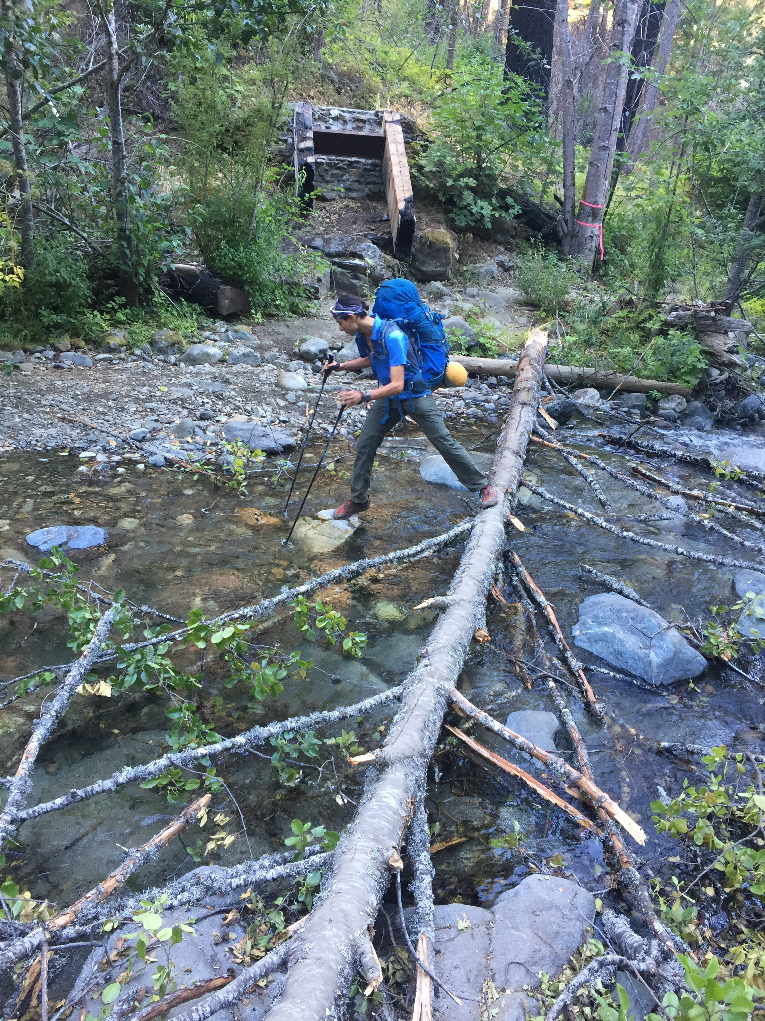 Macro abandons his first attempt at crossing Grider Creek after losing his balance. He nailed it the second try, and kept his feet dry too.