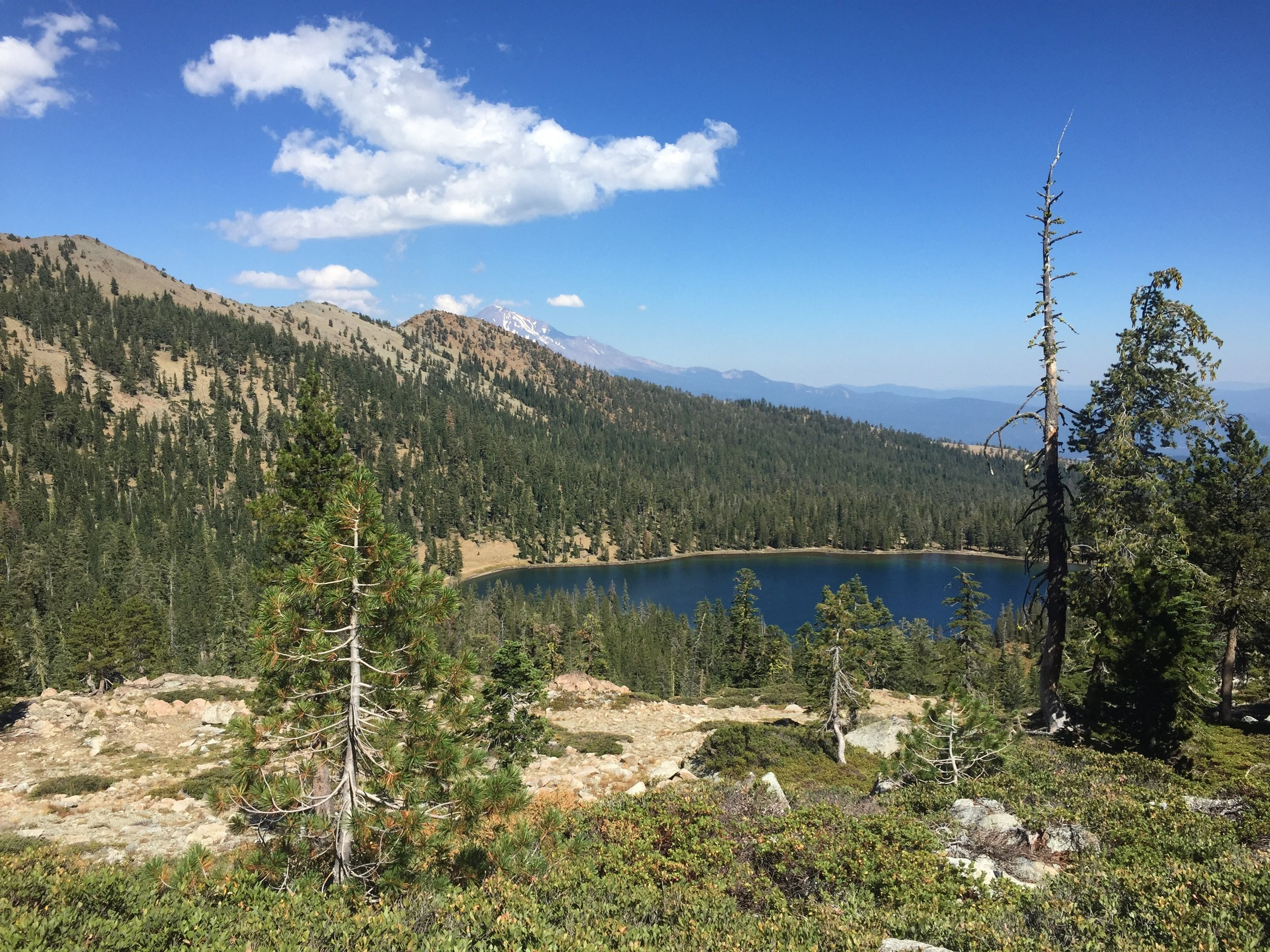 A peek of Mt. Shasta from the walk above Toad Lake