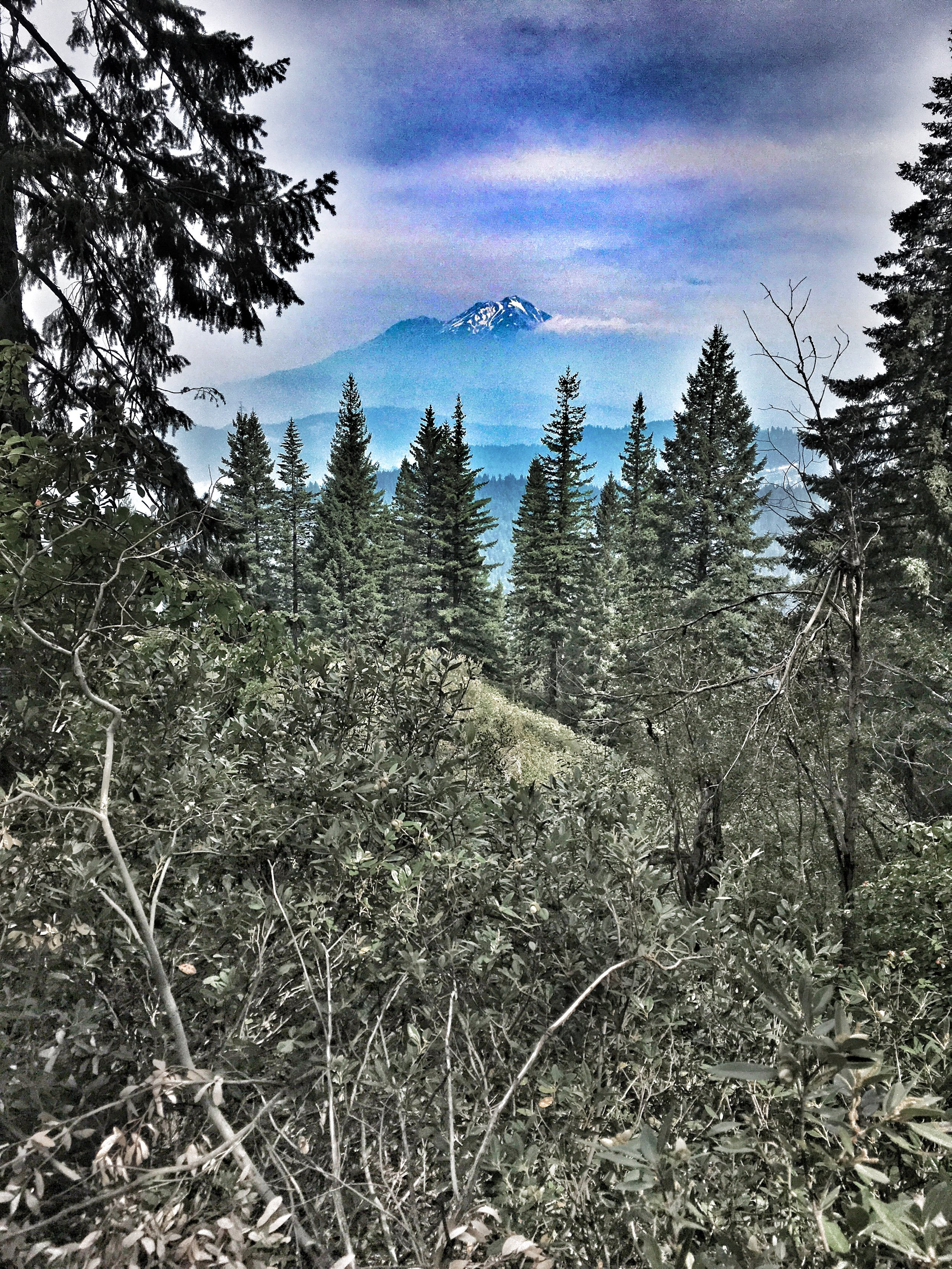 Mt. Shasta emerging from the smoke.