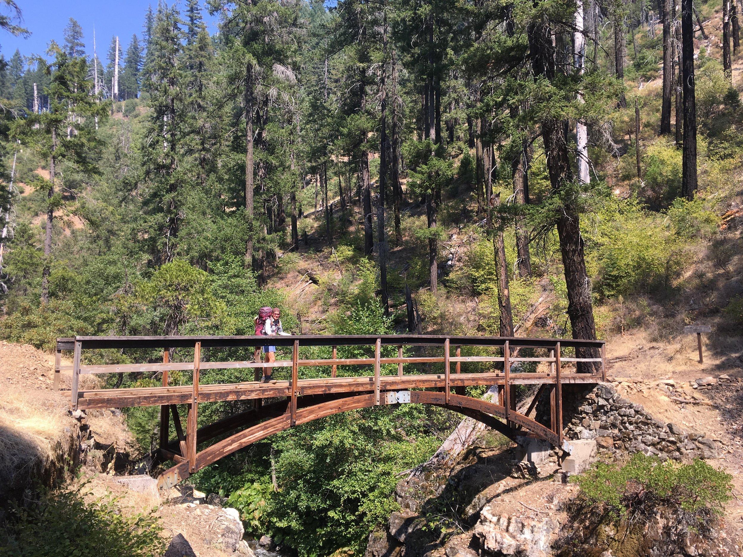 Huckleberry on the bridge over Squaw Valley Creek.