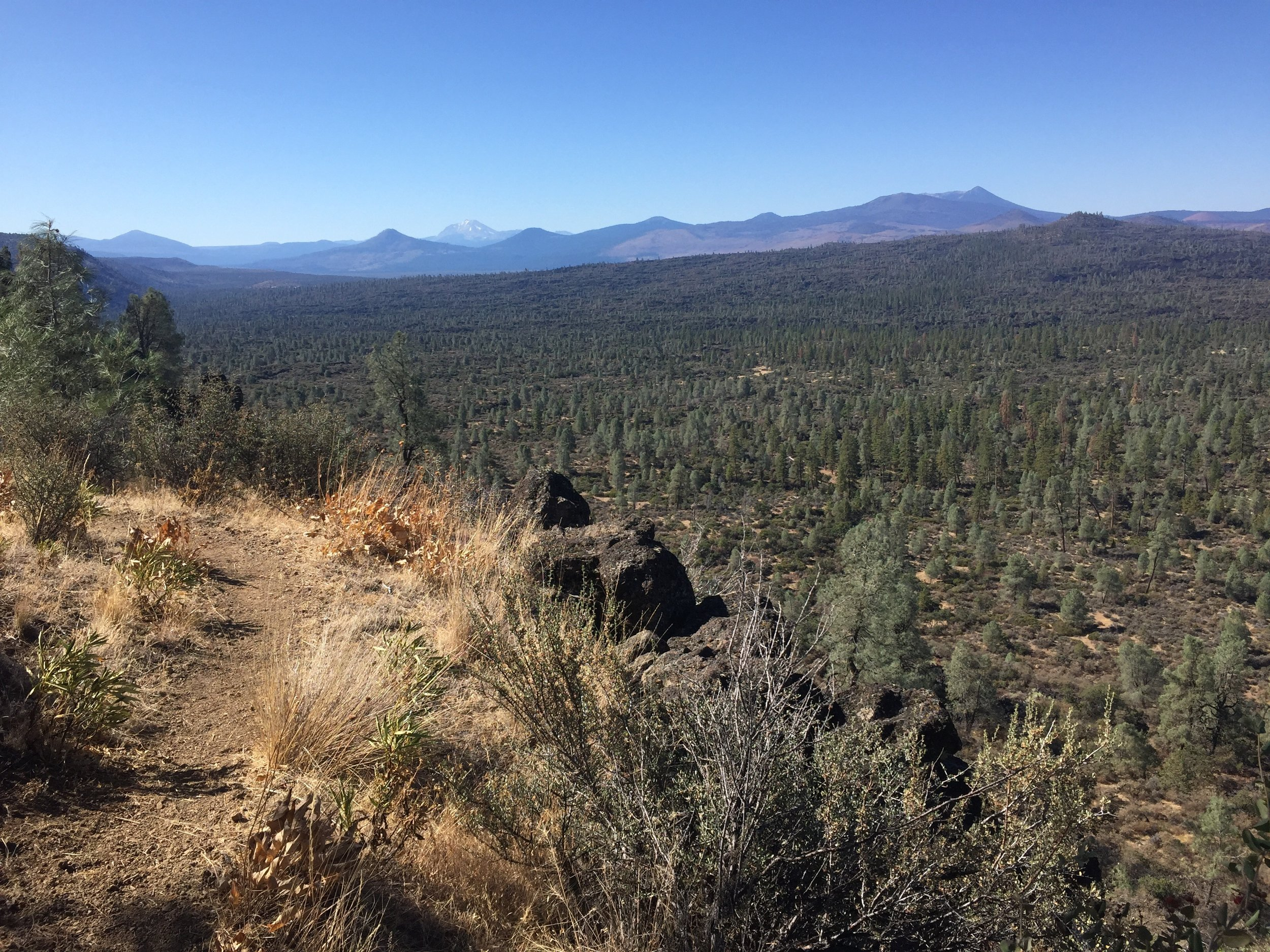 Climbing up the Hat Creek Rim's black lava edge, with a view of the Gray pine forest below