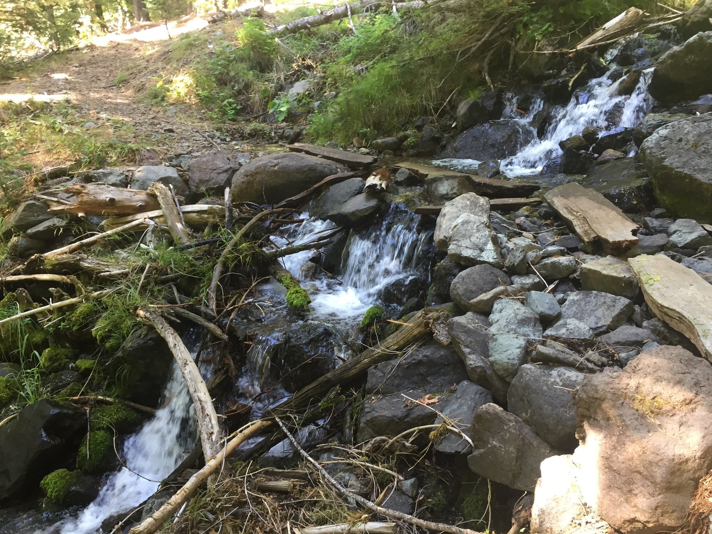 One of many creeks on the way to the Feather River Canyon