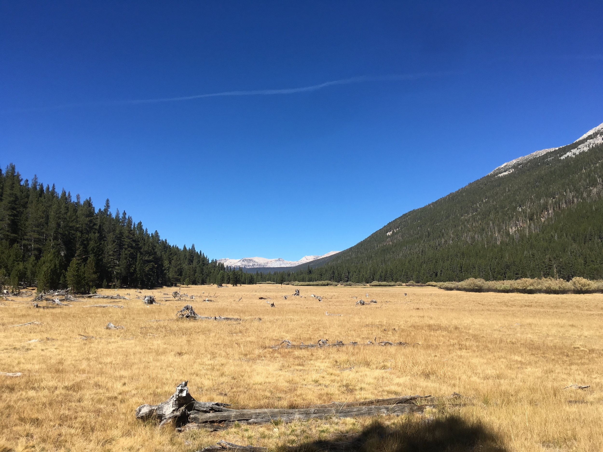 Lyell Canyon on an Indian Summer Day.