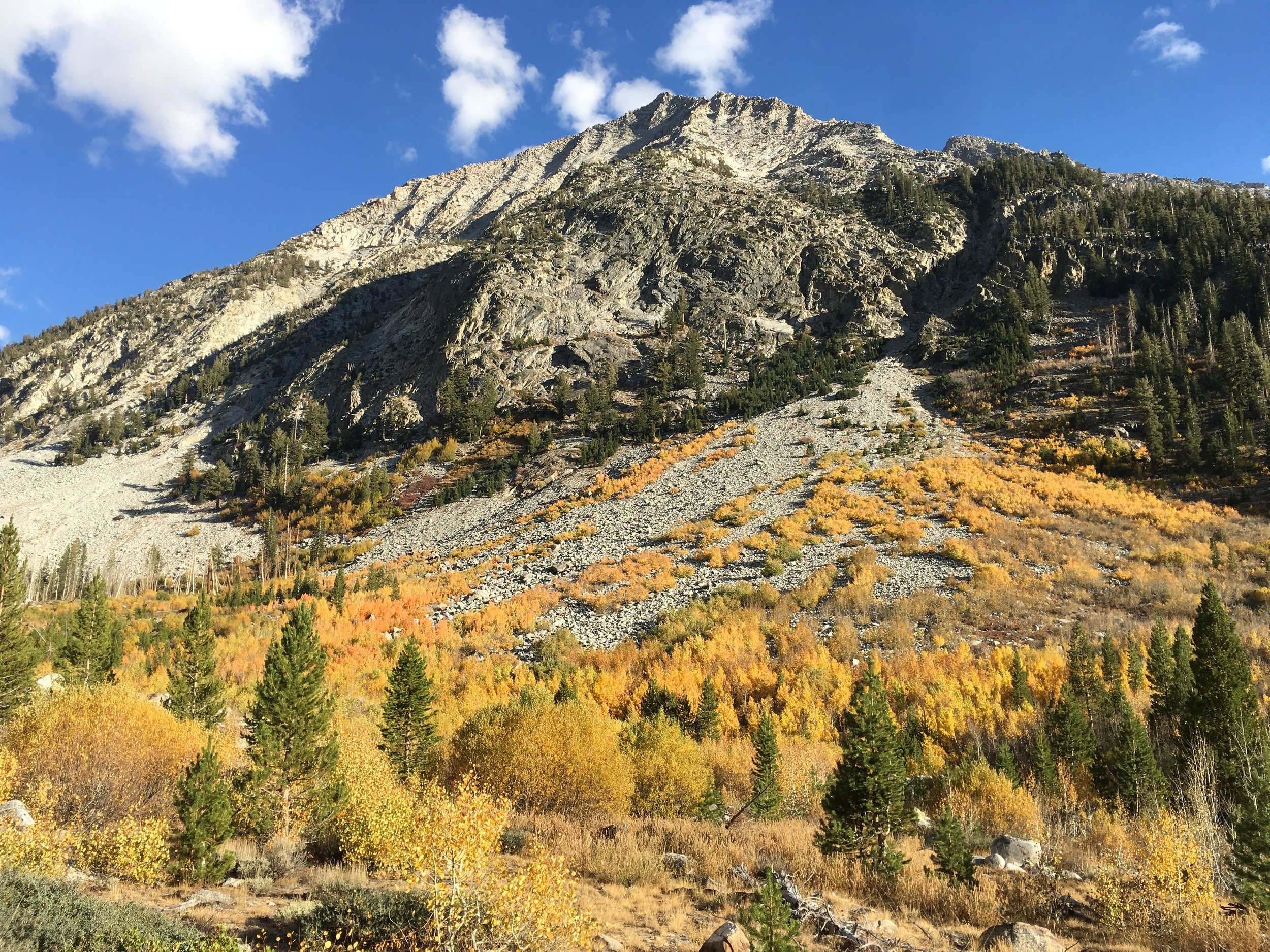 Full fall foliage on display along the canyons as we climbed towards the Golden Staircase.