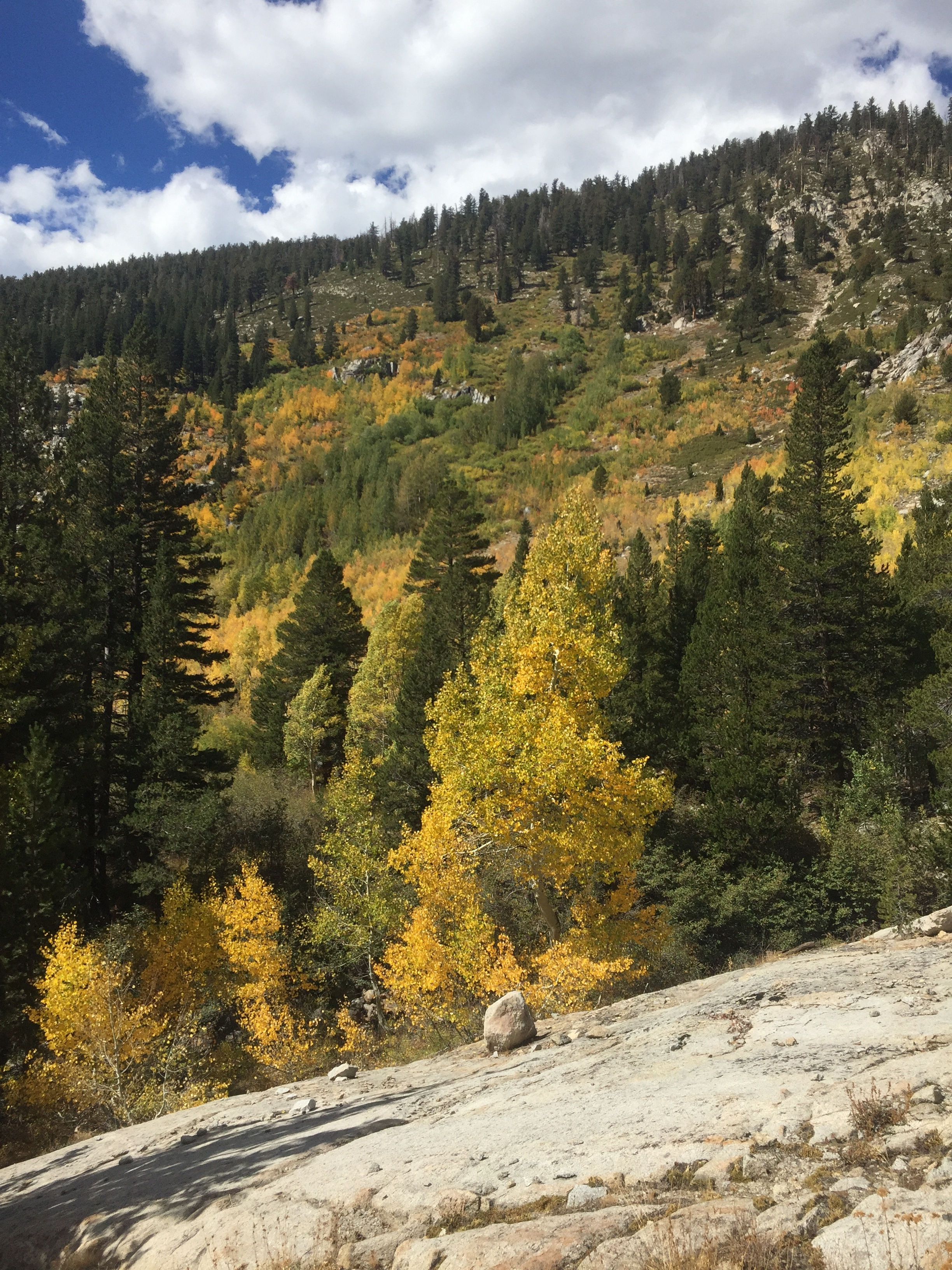 Fall colors on the hillside, and more clouds as we follow the path of Silver Creek towards the edge of the canyon
