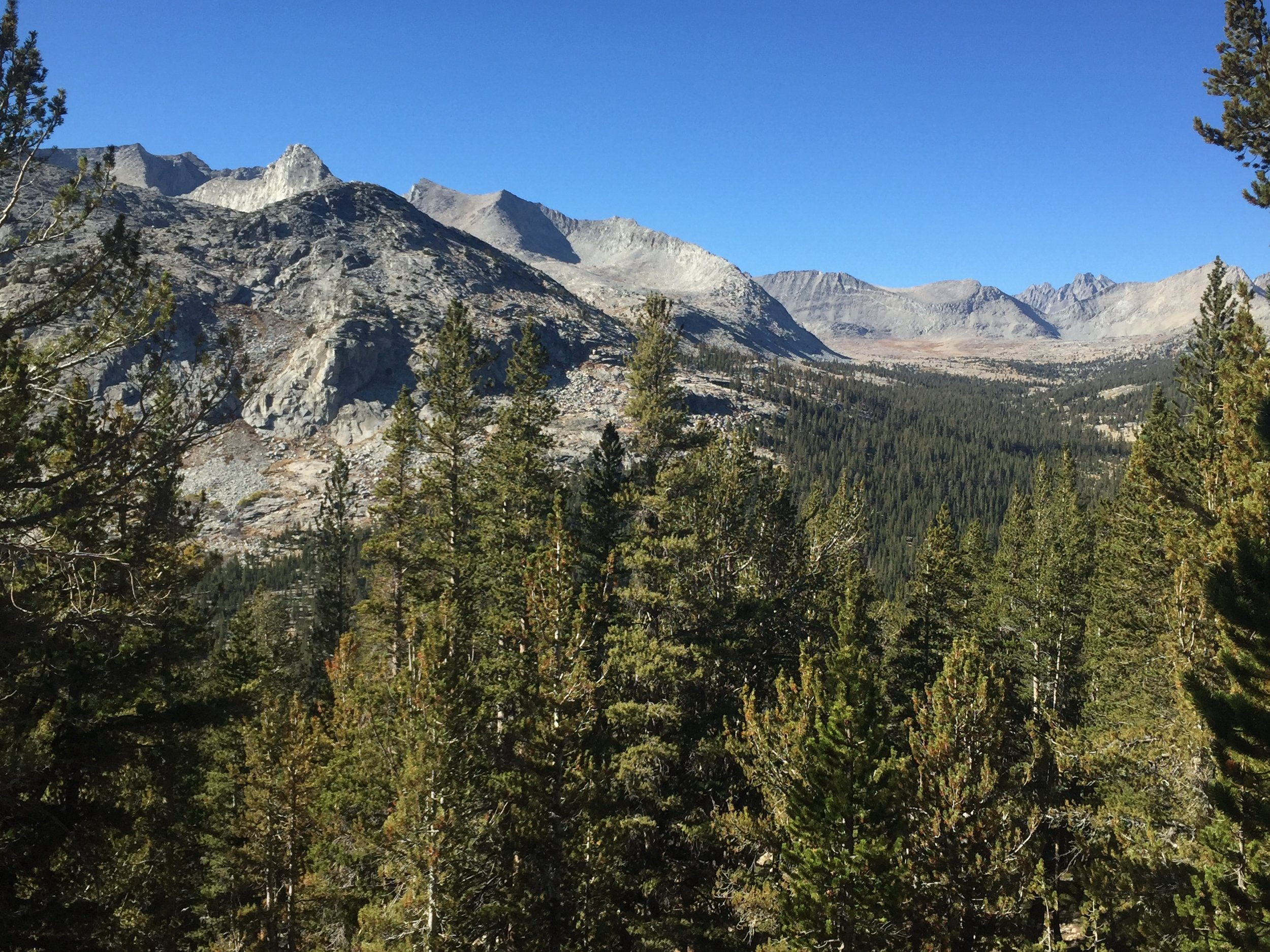 The peaks of Lake Basin (L), golden and treeless Upper Basin (R mid-field), and Mather Pass from the south with the Palisade Crest visible beyond (R above Upper Basin). Taken from the climb away from the South Fork Kings River