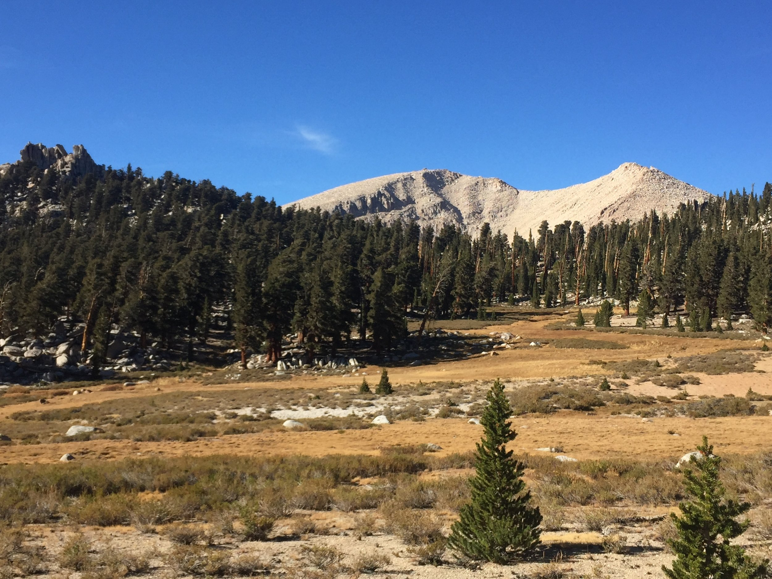 One of many high meadows as we head towards the southern reaches of the Sierra Nevada